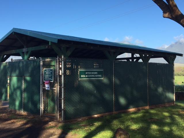 Maui Humane Society Kennels 9b_200353