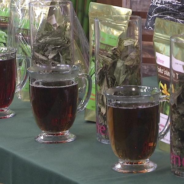 kihene native hawaiian teas living808