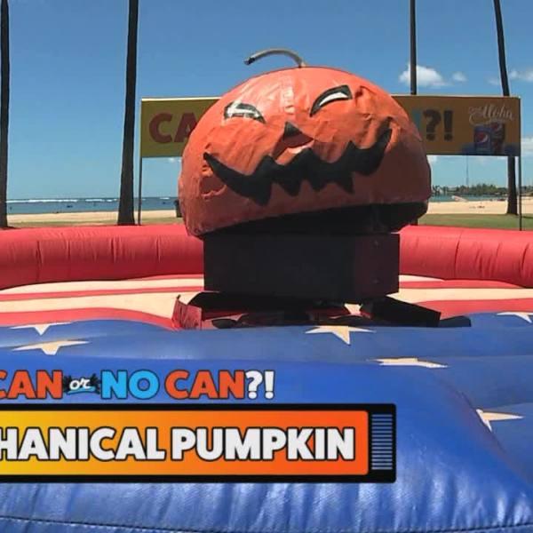 pumpkin_228346