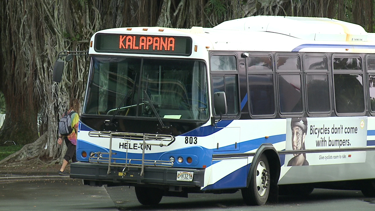 hawaii island hilo bus mass transit_231492
