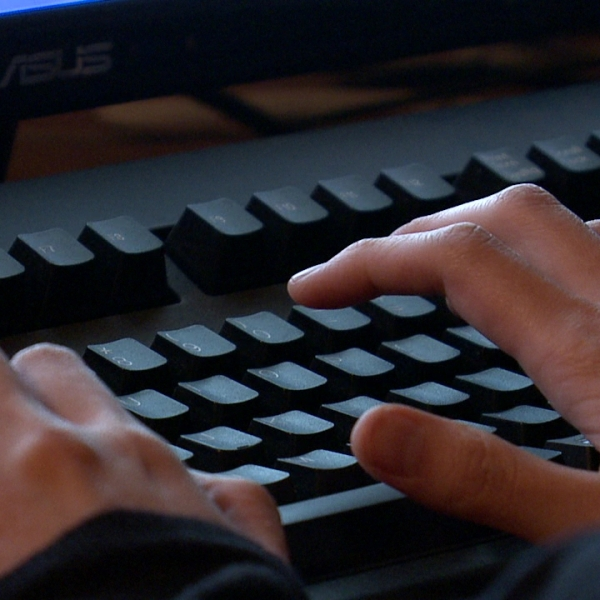 computer online shopping identity theft generic_232628
