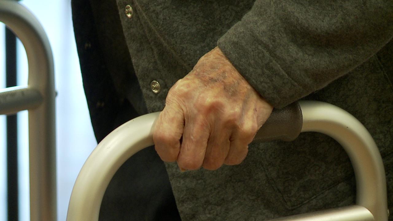 elderhood kupuna senior grandparents (6)_216926