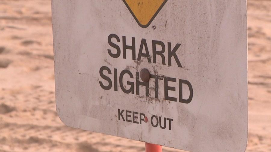 shark warning sign_1522704387384.jpg.jpg