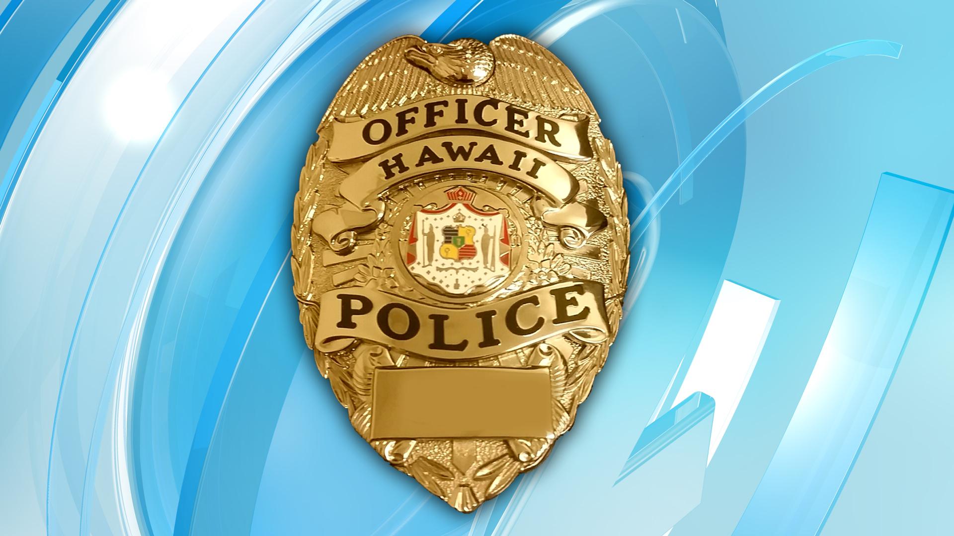 Hawaii Island Police Department Big Island County badge logo
