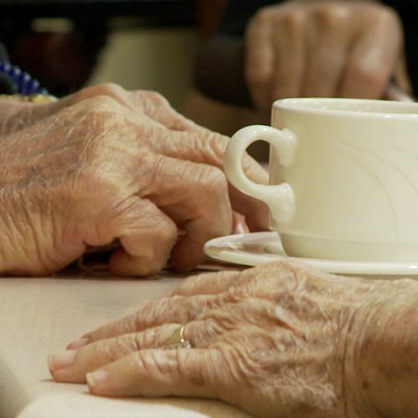 elderhood kupuna senior grandparents (8)_216927