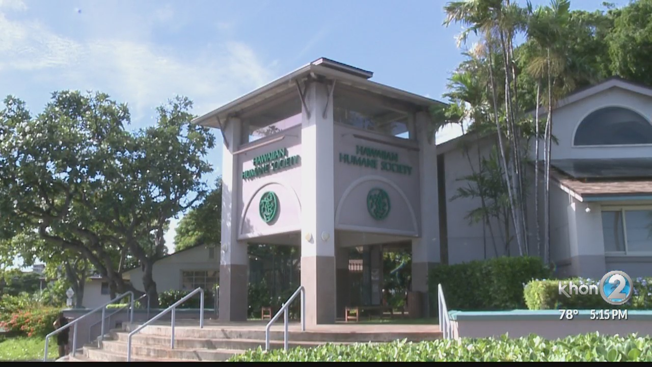 Hawaiian Humane Society needs more pet food donations