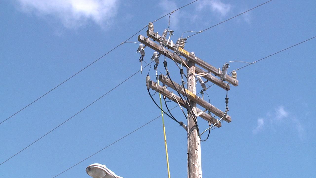 kalihi power lines_87904