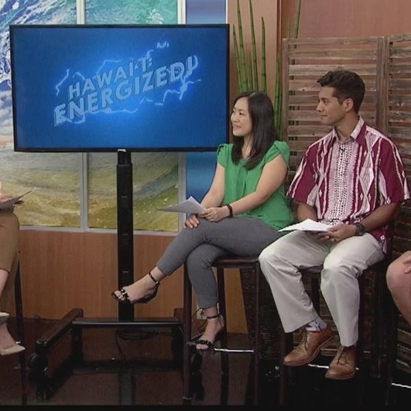 Empower Hawaii Project helps non-profits save energy