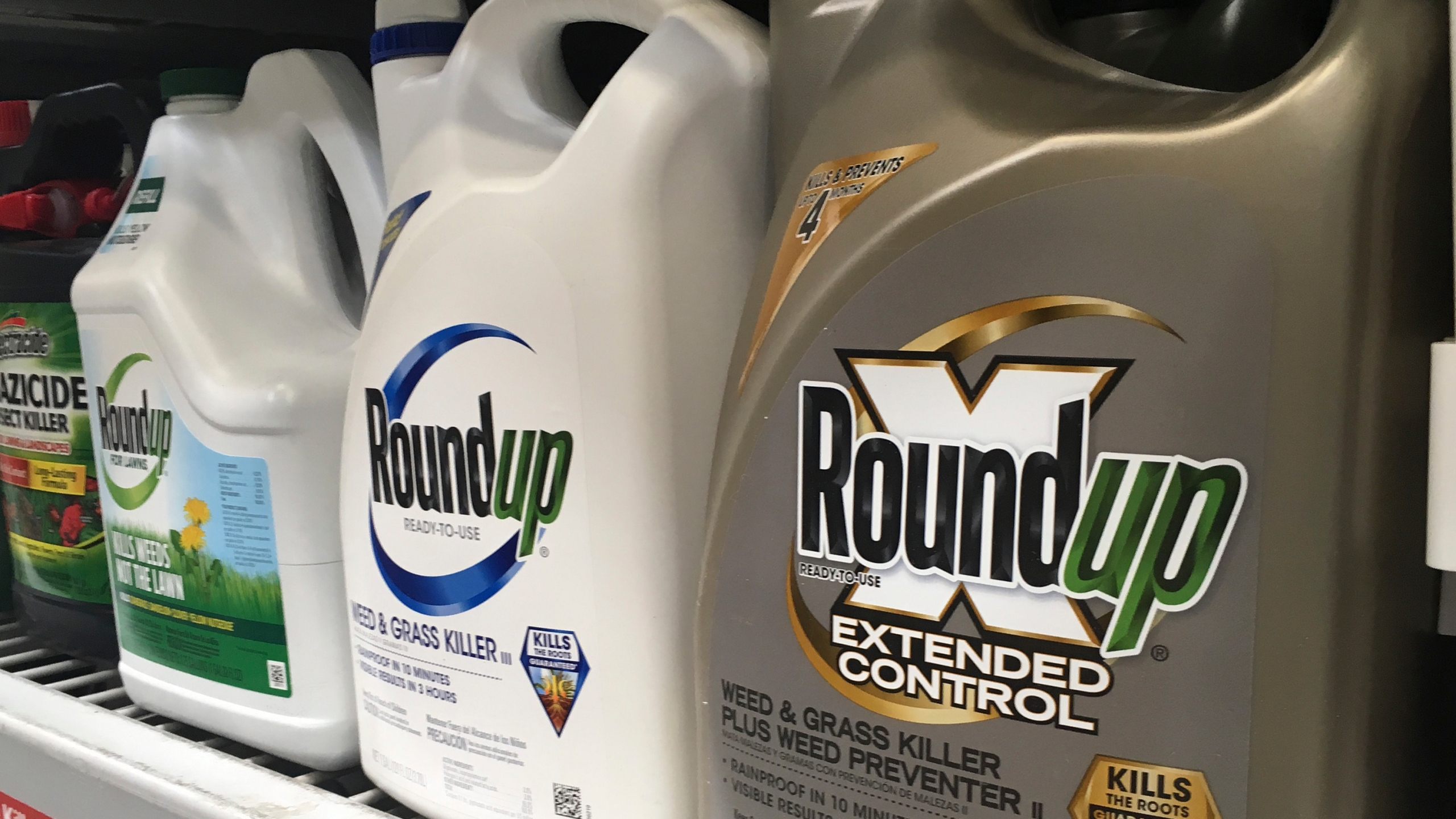 Roundup Weed Killer Cancer_1553036073142