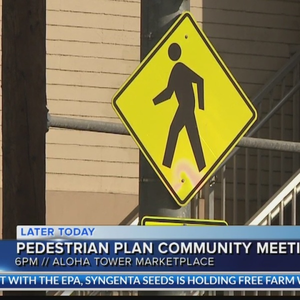 Creating Oahu's first Pedestrian Plan