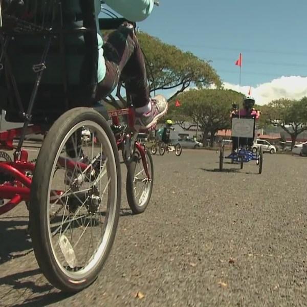 Kupuna Life Tricycles