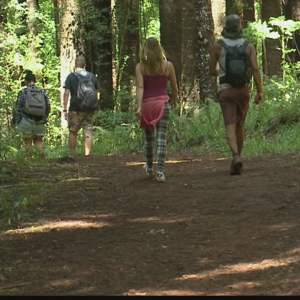 What challenges surround Makawao Forest Reserve when searching for Amanda Eller?