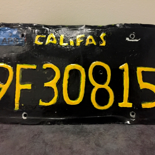ODD Phony License Plate_1560394408016