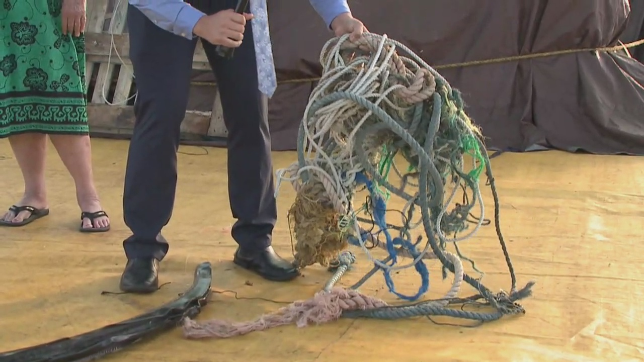 Breaking down 40 tons of trash collected in the Pacific