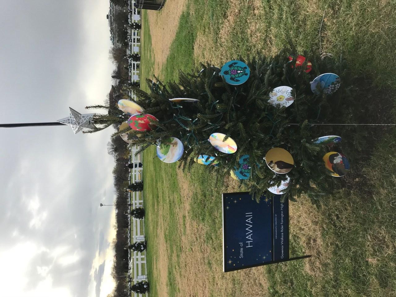 2021 Maui Christmas Ornaments Farrington High Students Design Christmas Ornaments For Hawaii Tree In Nation S Capitol Khon2