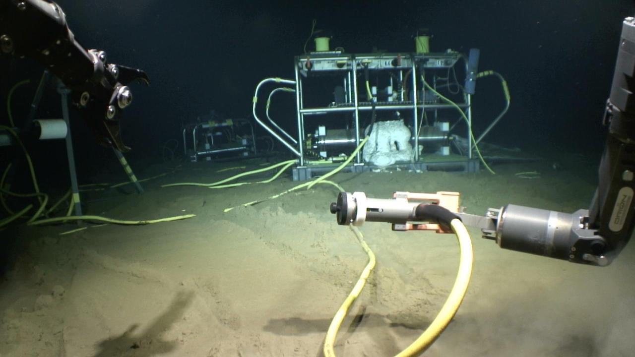 UH ocean observatory celebrates 10 years of seafloor data