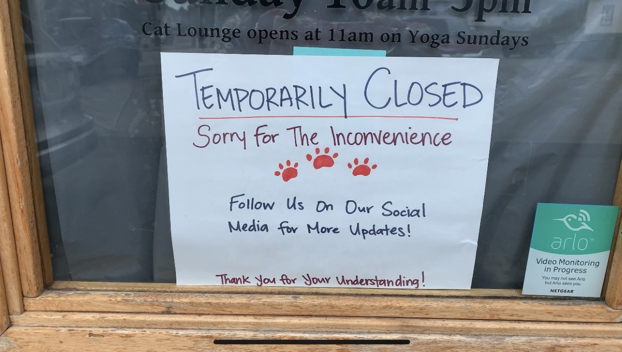 Hawaii Cat Cafe Closed